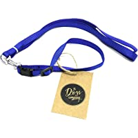 The Pets Company Leash and Collar Set Suitable for Puppies of All Dog Breeds, X Small, Blue