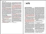 NIV, Thinline Bible, Large Print, Bonded