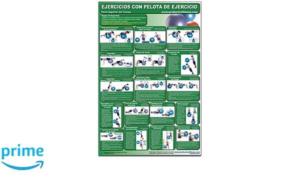 Ejercicios con pelota de ejercicio - Parte superior del cuerpo - Cartel - Body Ball Exercises - Upper body/Lower Body (Spanish Edition) CBBUL-SP (Poster): ...