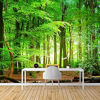 Wall Mural Forest Removable Wallpaper Wall Sticker for Bedroom Living Room, That You Will Love, Charming Style