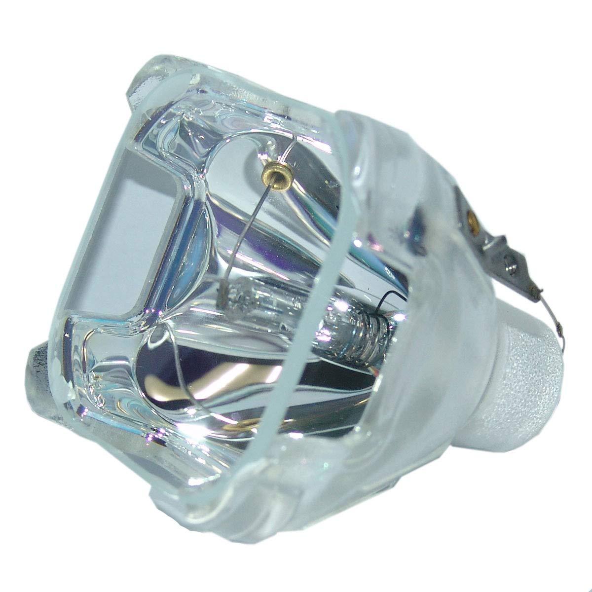 SpArc OEMプロジェクター交換用ランプ エンクロージャー/電球付き Eiki LC-XB22用 Economy Economy Lamp Only B07MJ3F8LZ