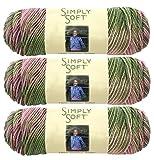 Bulk Buy: Caron Simply Soft Yarn Paints (3-Pack) Rose Garden C9700P-2