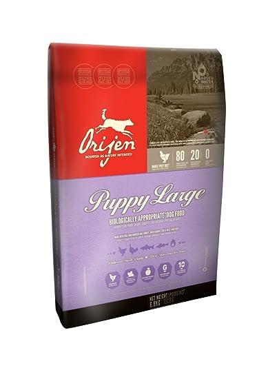 Buy Orijen Puppy Large Biologically Appropriate Dog Food 6 8kgs