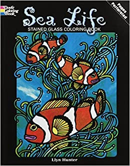 sea life stained glass coloring book dover nature stained glass coloring book llyn hunter 9780486264929 amazoncom books - Stained Glass Coloring Book