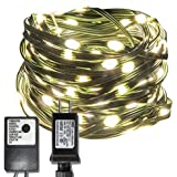 EAMBRITE 150LT 49FT Heavy Duty Micro LED String Lights Plug-in Warm White 8 Modes with Controller UL Adapter Wire Waterproof