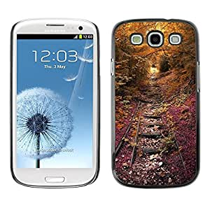 FECELL CITY // Duro Aluminio Pegatina PC Caso decorativo Funda Carcasa de Protección para Samsung Galaxy S3 I9300 // Tracks Rail Road Rustic Fall Nature