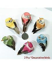 LYCOS3 2 Piezas Simulación Jardín Jardín Mini Pájaro Ornamentos, Simulación Mini Cute Parrot Bird Figuras