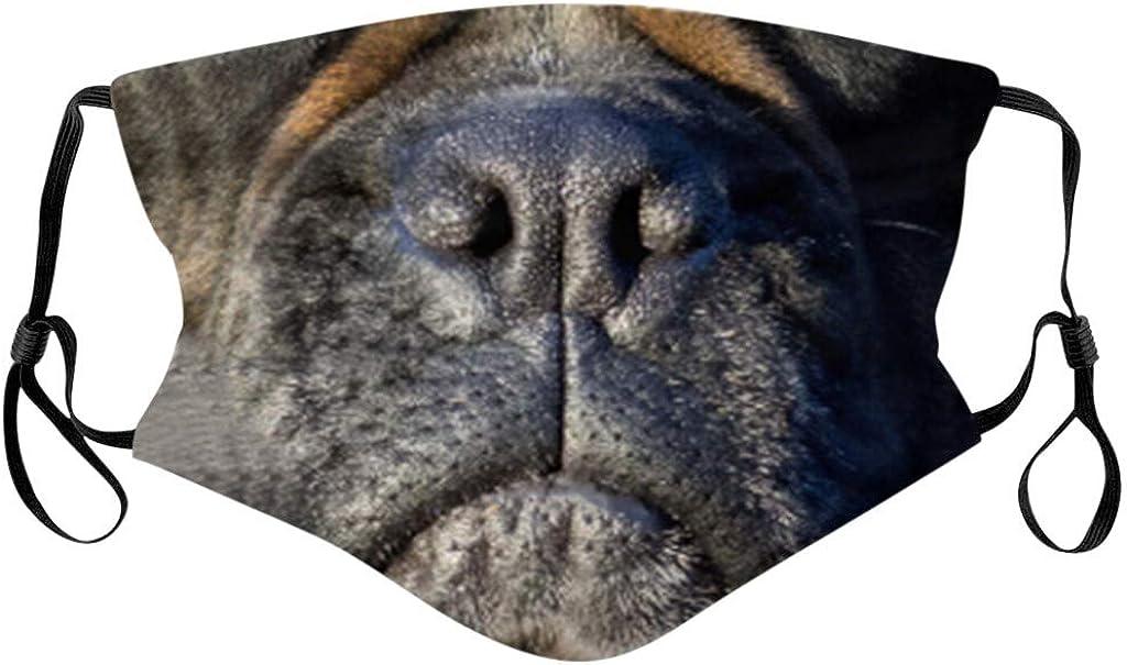 Sonojie Stirnband Nackenschutz Halstuch Modedruck Hund Katzengesicht Schädel Muster Baumwolle Weich Und Bequem Sturmhaube Doppelschicht Waschbar Radfahren Laufen Im Freien Bekleidung