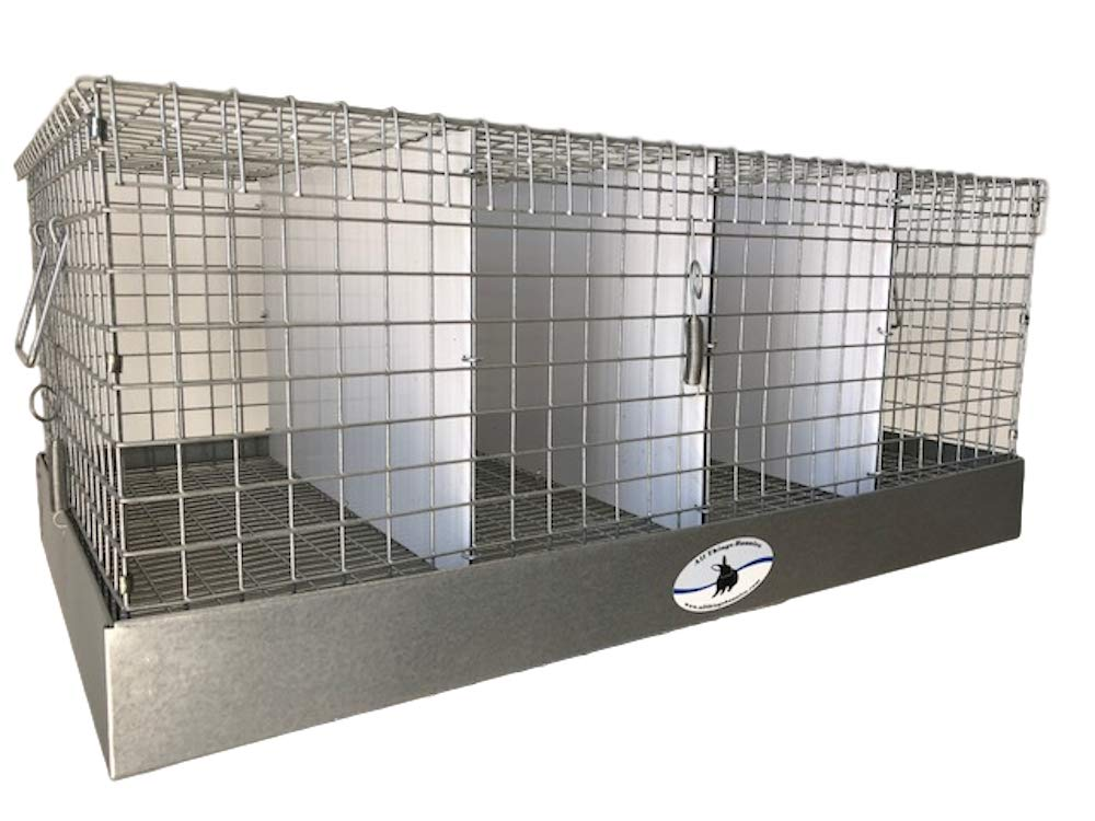 All Things Bunnies Rabbit Carrier/Transport Cage - 4 Hole (12x24x10) by All Things Bunnies