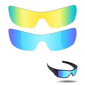 Fiskr - Lentes de Repuesto polarizadas para Gafas de Sol ...