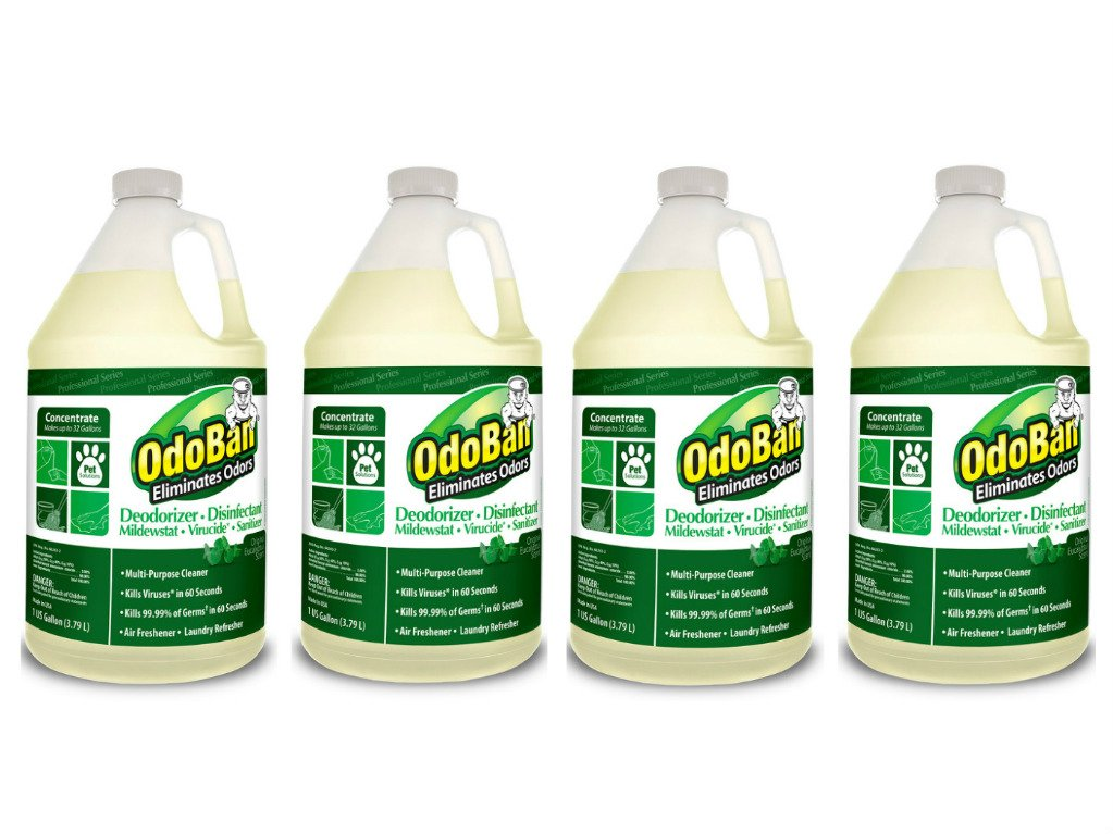 OdoBan 911062G4 Concentrated Odor Eliminator, Eucalyptus, 1gal Bottle (Case of 4)