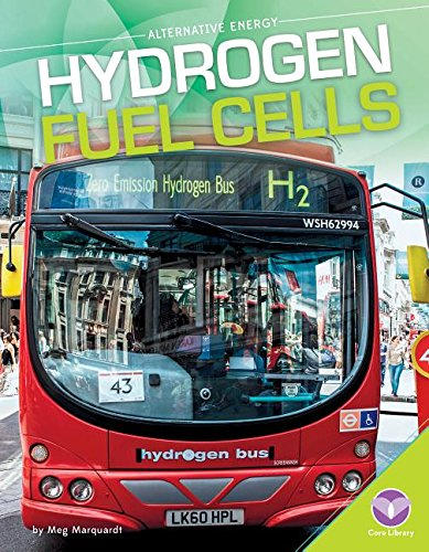 Hydrogen Fuel Cells (Alternative Energy)