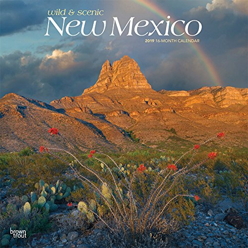 New Mexico, Wild & Scenic 2019 12 x 12 Inch Monthly Square Wall Calendar, USA United States of America Southwest State Nature (English, Spanish and French ()