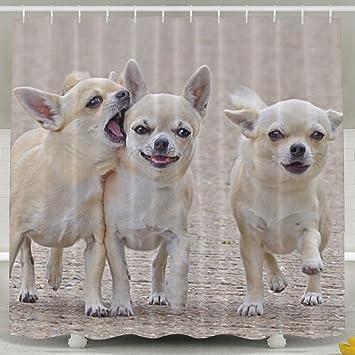 Chihuahua Three Friends Comrades Dog Walk Shower Curtain Repellent Fabric Mildew Resistant Machine Washable Bathroom Anti