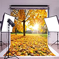 Kate 5x7ft/1.5x2.2m Autumn Photography Backdrops Yellow Fallen Leaves Background Photo Studio Sunny Day Backdrop