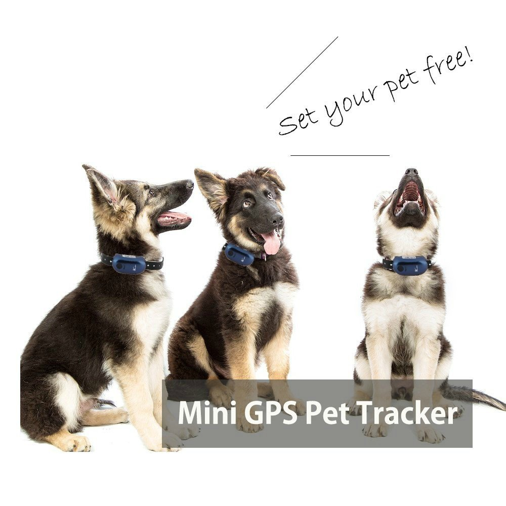 LK110 Mini Waterproof GPS Pet Tracker Compatible with iOS & Android for Locating and Monitoring Pets By ADD&SHIP
