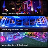 EFX Premium Submersible LED Lights with Remote