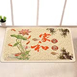 Garden door mat bathroom mat skid-proof mats in the Hall -4060cm i