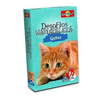 Bioviva- Juego de Cartas Desafíos Naturaleza Gatos, Color (Asmodee DES13ES)