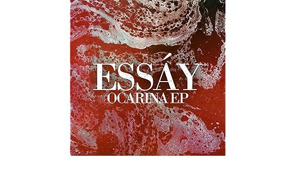 essay ocarina dominik