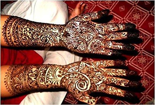 high quality indian ayur henna