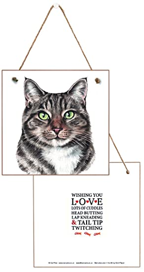 Gift-a-Card Placa de Pared con diseño de Gato Blanco y Tabby Que