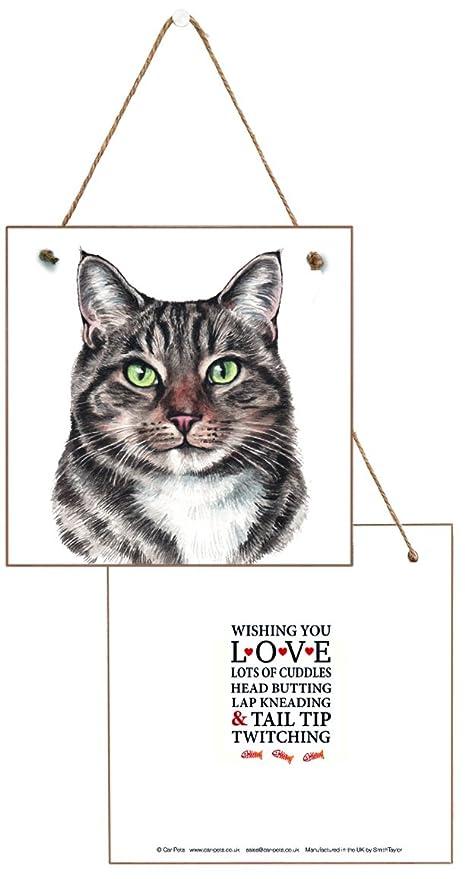 Gift-a-Card Placa de Pared con diseño de Gato Blanco y Tabby Que ...