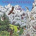 Vogelstimmen im Gebirge: Mit gesprochenen Erläuterungen Hörbuch von Karl Heinz Dingler, Andreas Schulze Gesprochen von:  div.