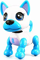 Top 10 Best Robot Pets For Kids (2021 Reviews & Buying Guide) 5