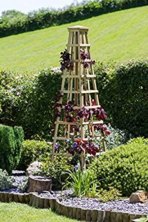 Climbing Plant Trellis Pyramid   Wooden   Plant Support   Available As  Small, Medium Or