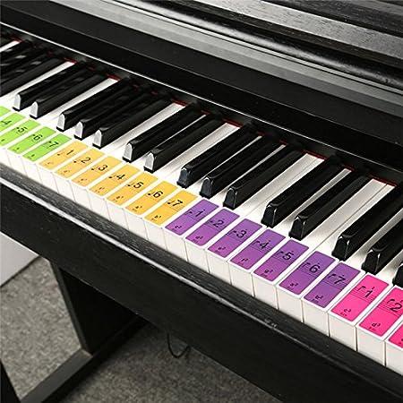 JIALI - Pegatinas de piano y teclado con notas musicales para ...
