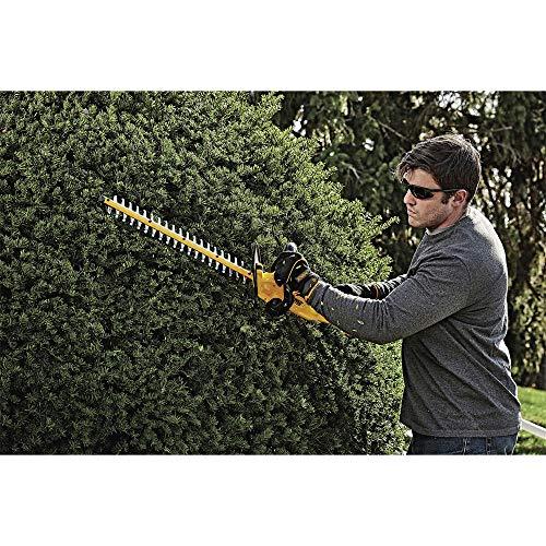 DEWALT DCHT820P1 Cordless Electric Hedge Trimmer