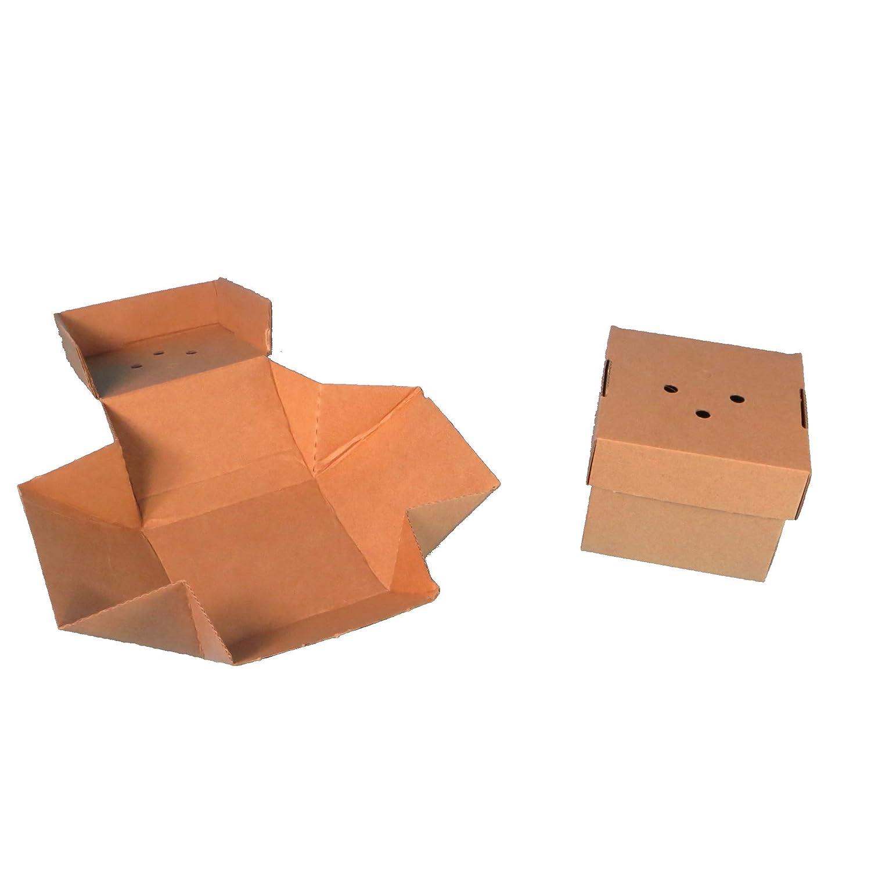 Juego de 100 cajas de cartón plegables para hamburguesas (13 x 12,5 x 10 cm), color marrón: Amazon.es: Industria, empresas y ciencia