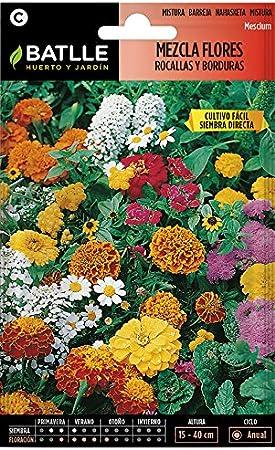 Semillas de Flores - Mezcla de Flores para Rocallas y Borduras - Batlle: Amazon.es: Jardín