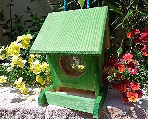 Comedero btv de vofu1 K de gras001 XXL PREMIUM Pajarera Nido Comedero Marien Mariquita Verde Jardín Verde Insectos, como set para nido Meisen Meise Buzón o para insectos Hotel, Comedero/Pájaro Pajarera Comedero