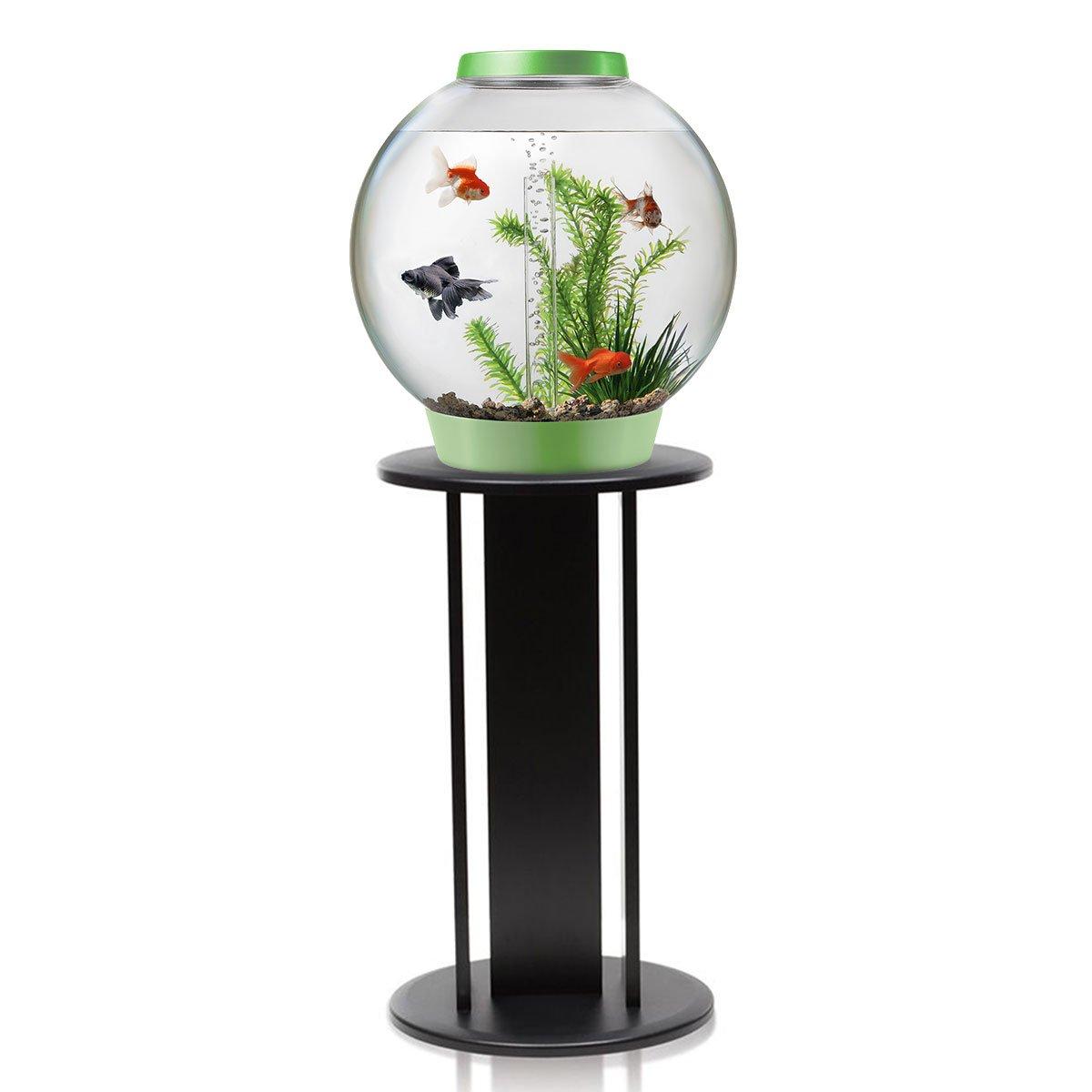 biOrb Classic L Acuario en hoja verde estándar con iluminación LED y soporte negro: Amazon.es: Productos para mascotas