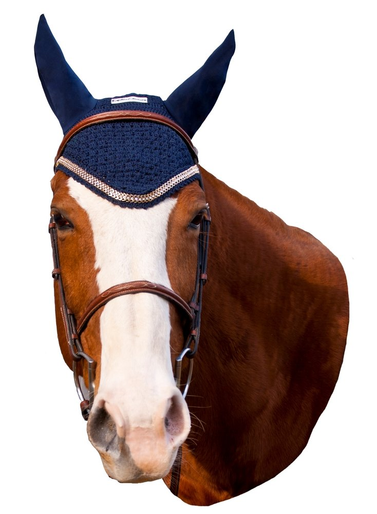 Equine Couture Fly Bonnet with Lurex Rope - Pony Color - Black, Size - Full by Equine Couture