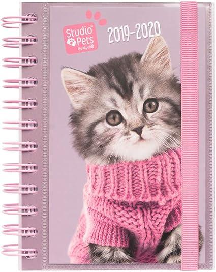 Agenda escolar 2019/2020 día página S Studio Pets Cats: Amazon.es: Oficina y papelería