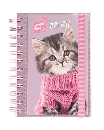 Amazon.com : School Diary 2019/2020 Day Page S Studio Pets ...