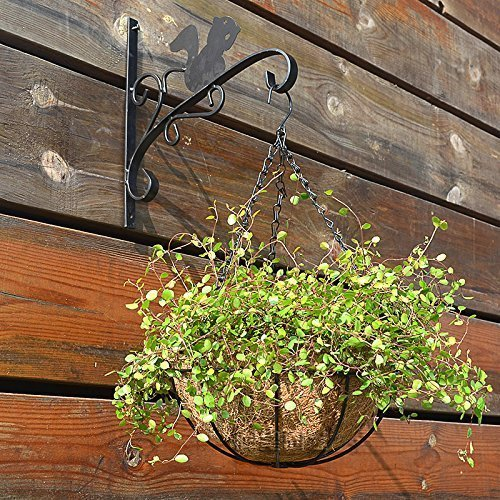 Wire Baskets Wholesale (Metal Hanging Planter Basket With Coco Coir Liner 10 Inch Round Wire Plant Holder With Chain Porch Decor Flower Pots Hanger Garden Decoration Indoor Outdoor Watering Hanging)