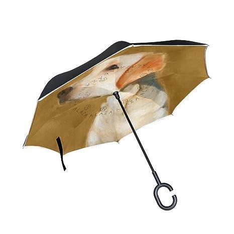 Portable Folding Double Layer Umbrella w// C Shape Handle for Beach Rainy Day
