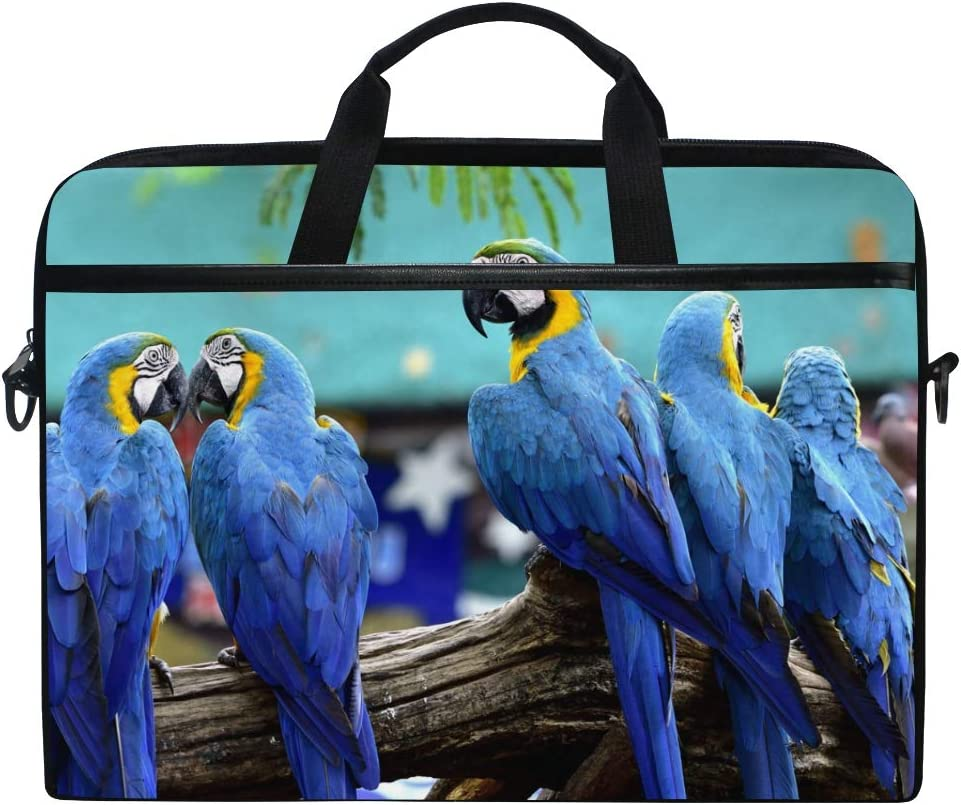 Jiayangzi Blue Gold Macaw Birds Laptop Case Laptop Shoulder Bag Messenger Bag Lightweight Notebook Sleeve Carrying Case with Strap for Business Casual School