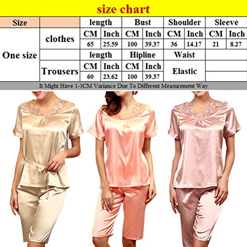 Zhhlinyuan Ladies Satin T-shirt and Short Set Pyjamas Nightwear g001 Champagne
