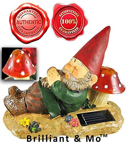 Solar Garden Lamp Buyer - 6