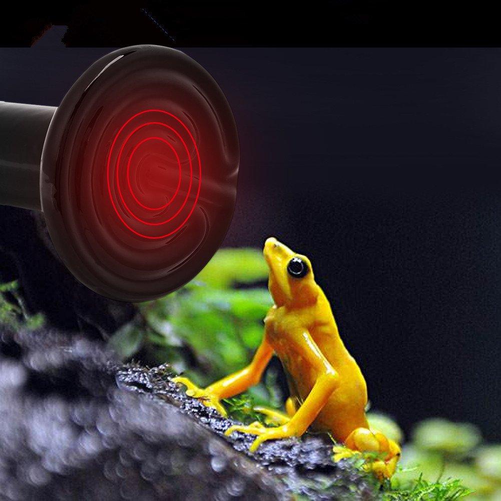 Reptile Heating Light, 2Pcs Infrared Ceramic Light Bulb Lamp for Tortoise Lizard Snake amphibians Small Animal Pet 110V (150W)