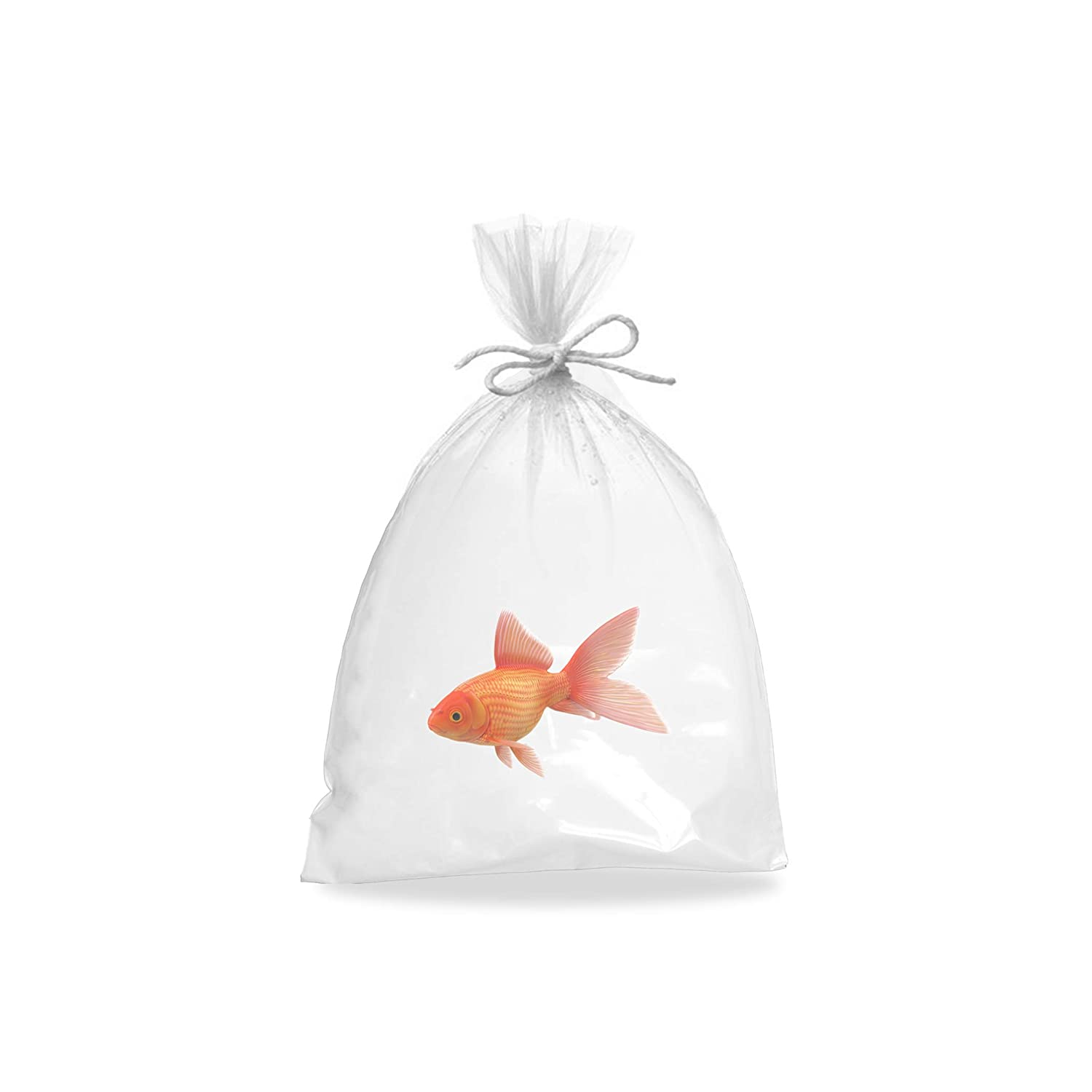 APQ Pack of 100 Fish Poly Bags 10 x 20 Jumbo Clear Polyethylene Bags 10x20, 2 mil Open Ended Bags for Packing and Storing Plastic Bags for Industrial, Food Service