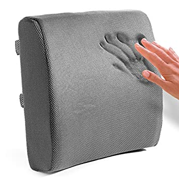 Easy Posture Brands Lumbar Support Cushion Back Pillow For Office Chair Or Car Lower Back Pain