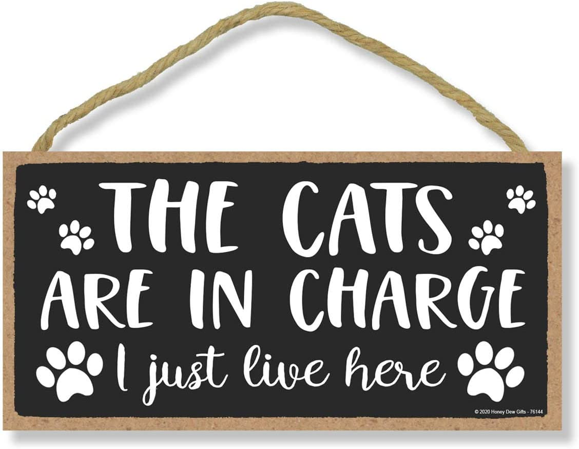 Honey Dew Gifts The Cats are in Charge, Wooden Home Decor for Cat Pet Lovers, Decorative Funny Wall Sign, 5 Inches by 10 Inches