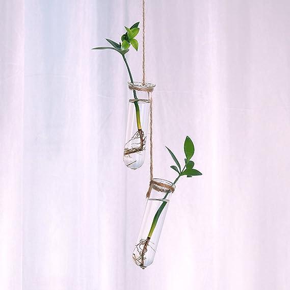 Gazechimp 8x Vase Eprouvette En Verre Tube /À Essai Support Fleur Art D/éco Maison Int/érieur D/écoration