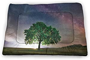 Pet Mat for Crate Farm House Decor Collection Bite-Resistant Highlands Tea Plantations from Wood Balcony Perspective Sunrise in Eary Morning with Fog Green